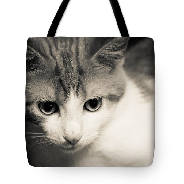 Tibbet 5 Tote Bag by Nick Kirby