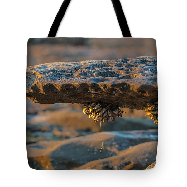 Tide Pools Tote Bag