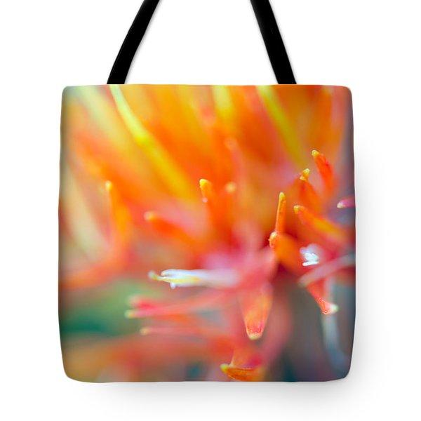 Tie-dye Tote Bag