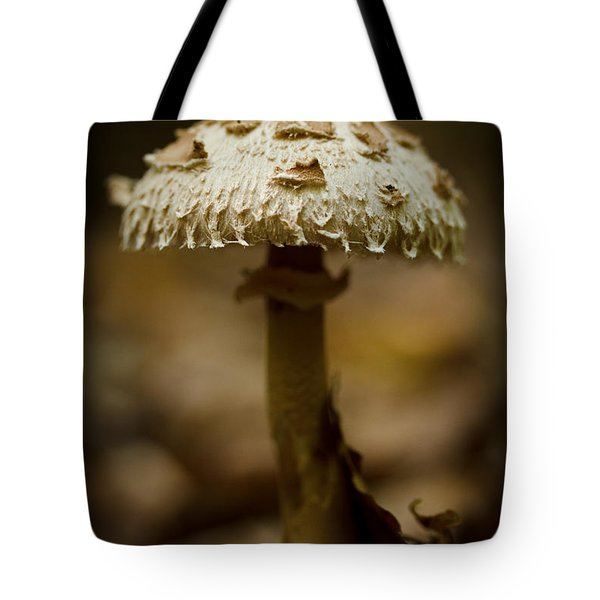 Tiffany Shroom Tote Bag by Shane Holsclaw