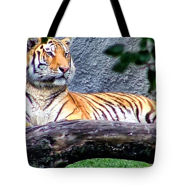 Tote Bag featuring the photograph Tiger 1 by Dawn Eshelman