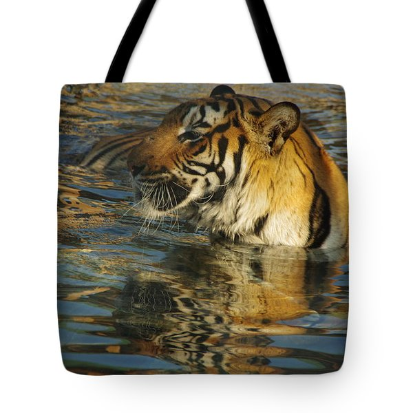 Tiger 3 Tote Bag
