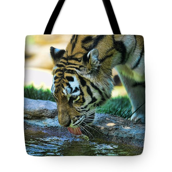 Tiger Drinking Water Tote Bag by Paul Ward