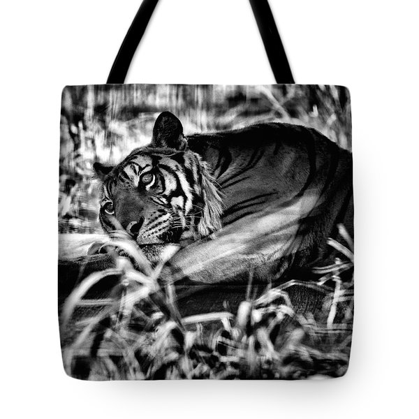 Tote Bag featuring the photograph Tiger by Hayato Matsumoto