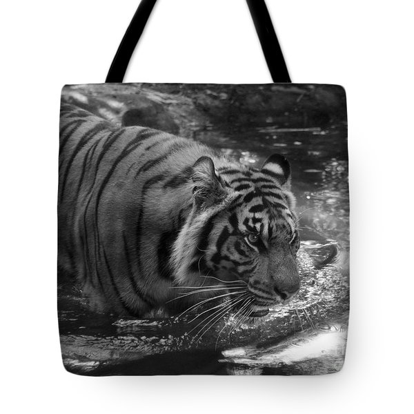 Tote Bag featuring the photograph Tiger In The Water by Lisa L Silva