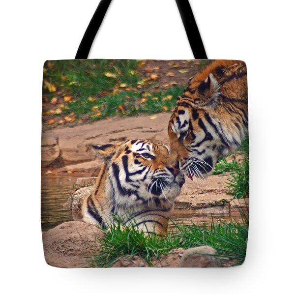 Tiger Kiss Tote Bag by David Rucker