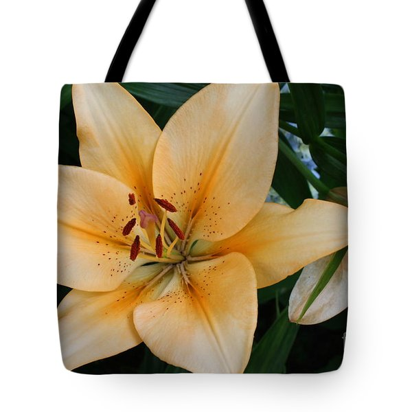 Tote Bag featuring the photograph Tiger Lily by Dora Sofia Caputo Photographic Art and Design