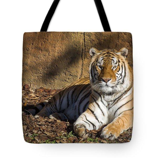 Tiger Tote Bag by Steven Ralser