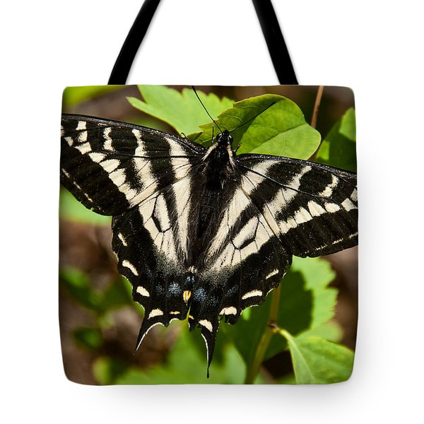 Tote Bag featuring the photograph Tiger Swallowtail Butterfly by Jeff Goulden