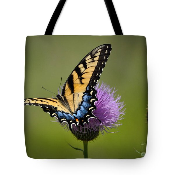 Tiger Swallowtail Tote Bag by Cheryl McClure