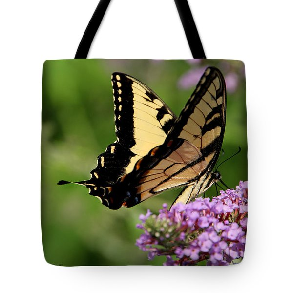 Tiger Swallowtail On Butterfly Bush 2 - Featured In 'comfortable Art' And 'flower W Co' Macro Groups Tote Bag by EricaMaxine  Price