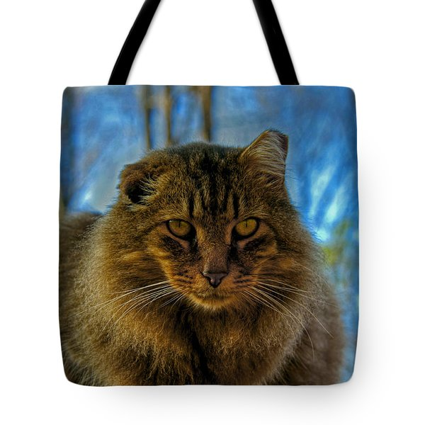 Tiger Up Close Tote Bag by Andy Lawless