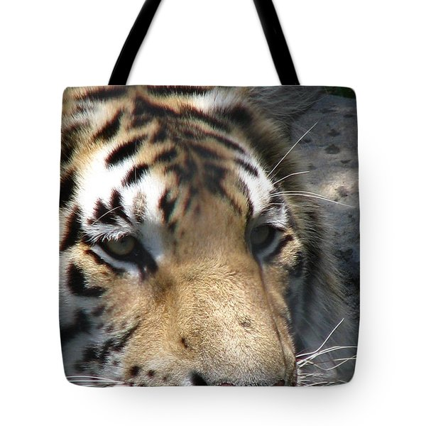 Tiger Water Tote Bag by Greg Patzer