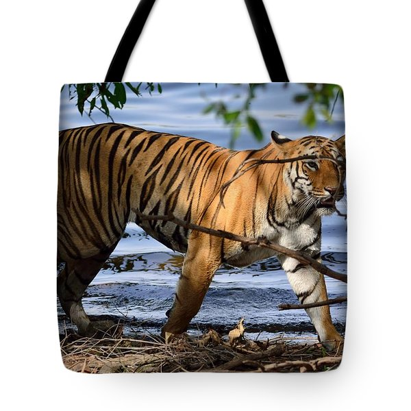 Tigress Along The Banks Tote Bag