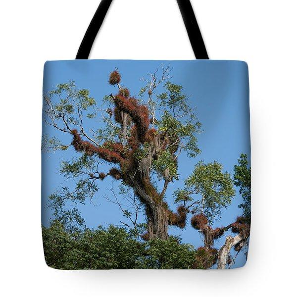 Tikal Furry Tree Tote Bag