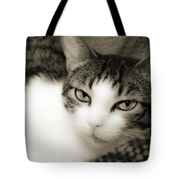 Tilly Little Miss Attitude Tote Bag by Andee Design