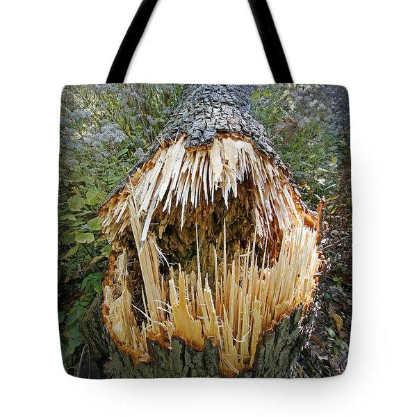 Timber Teeth Tote Bag by Martin Konopacki