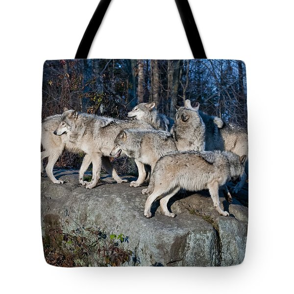 Timber Wolf Pack Tote Bag
