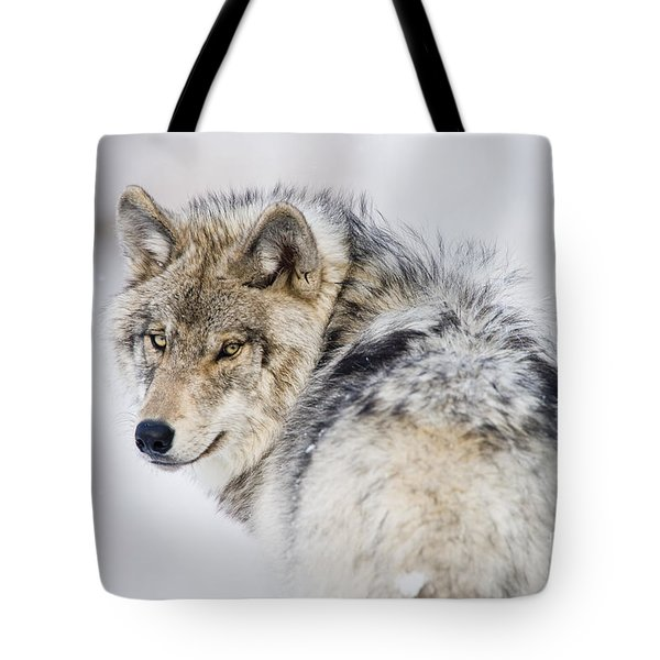 Timber Wolf Pictures 1268 Tote Bag by World Wildlife Photography