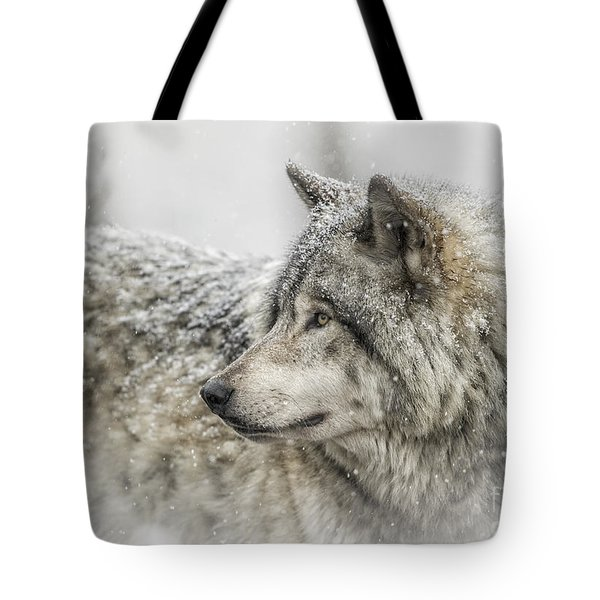Timber Wolf Pictures 280 Tote Bag