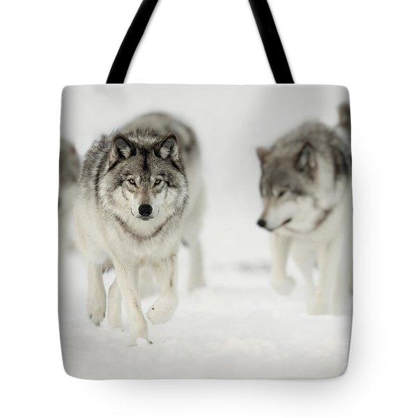Timber Wolf Pictures 65 Tote Bag