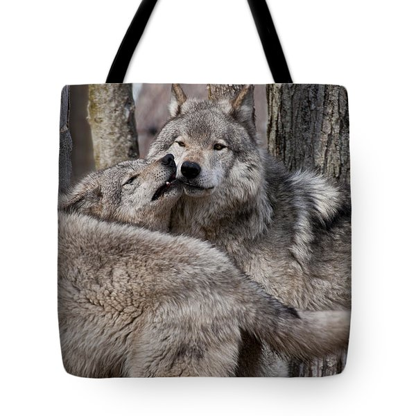 Tote Bag featuring the photograph Timber Wolves Playing by Wolves Only
