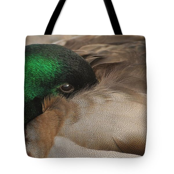 Tote Bag featuring the photograph Time For A Nap by Sabine Edrissi