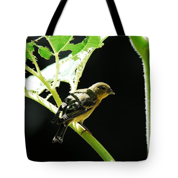 Time For Lunch Tote Bag by Laurianna Taylor