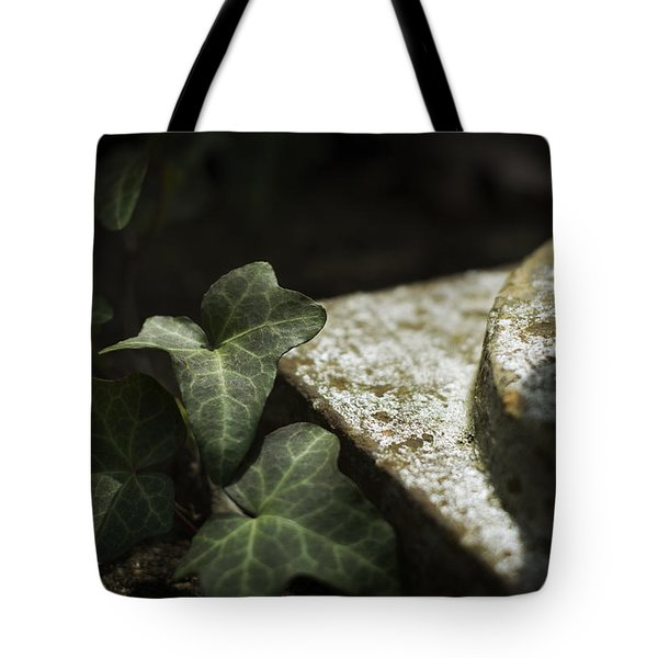 Tote Bag featuring the photograph Time Is The Substance by Rebecca Sherman