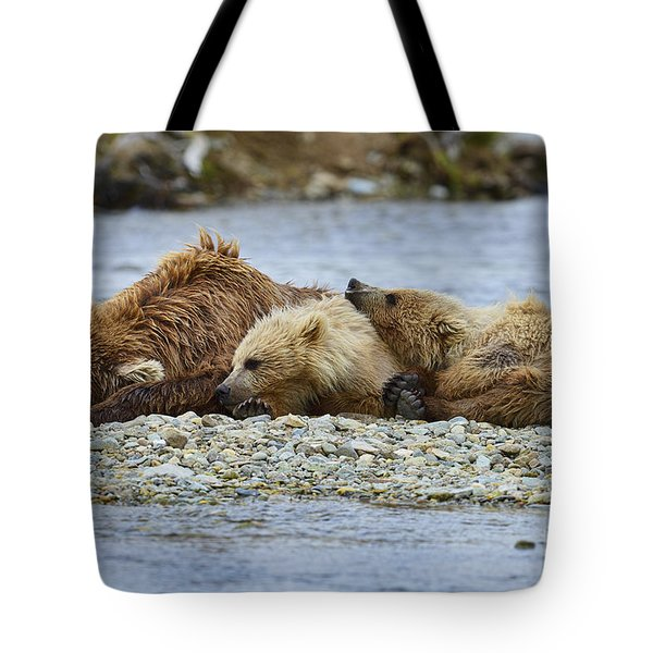 Time To Relax Tote Bag by Dan Friend