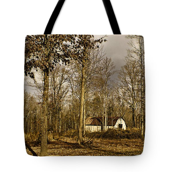 Timeless Tote Bag by Swank Photography