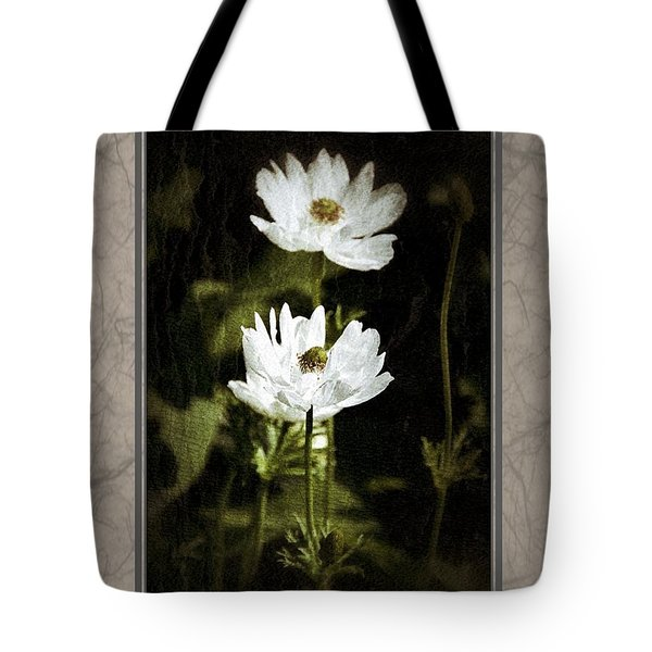 Tote Bag featuring the photograph Timeless Two by Darla Wood