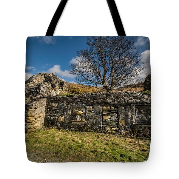 Times Past Tote Bag by Adrian Evans
