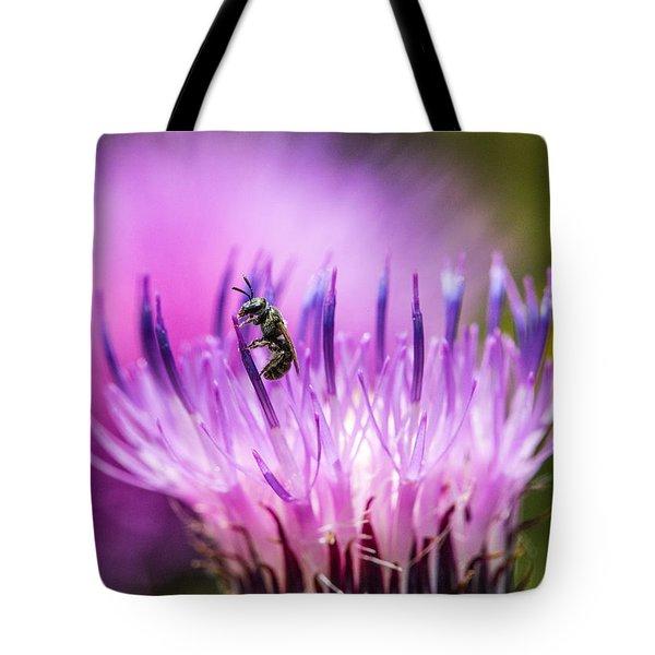 Tiny Dark Bee On Texas Thistle Tote Bag