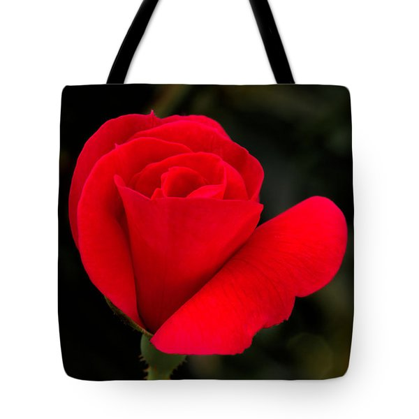 Tiny Knockout Tote Bag by Dave Bosse