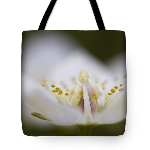Tiny Little Arctic Wildflower Tote Bag by Heiko Koehrer-Wagner