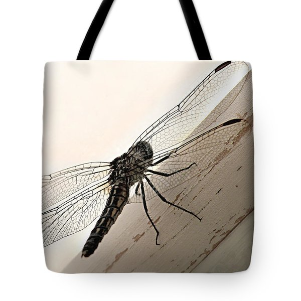 Tiny Magnificence  Tote Bag by Micki Findlay
