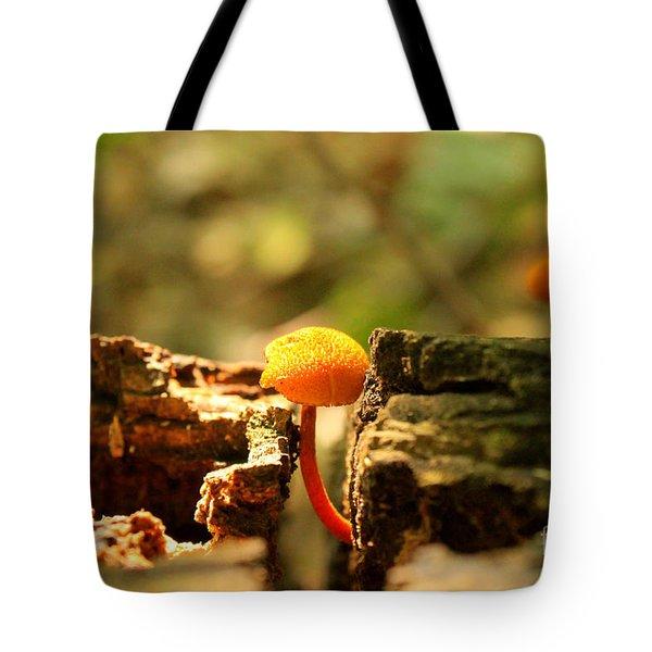 Tiny Mushroom Tote Bag