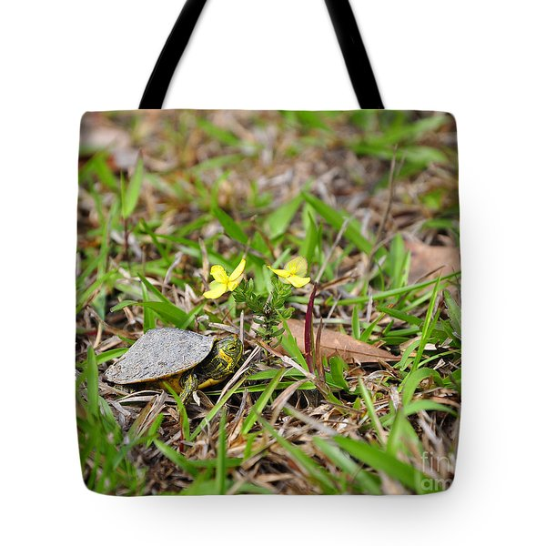 Tiny Turtle Tote Bag by Al Powell Photography USA