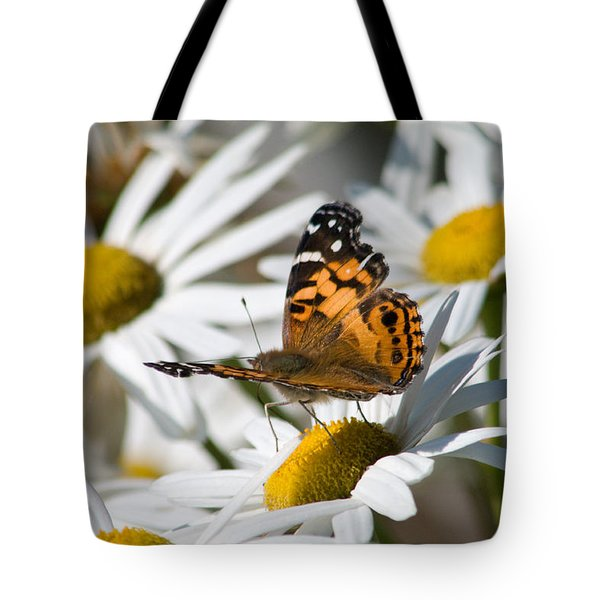 Tote Bag featuring the photograph Tip-toeing On Daisies by Greg Graham