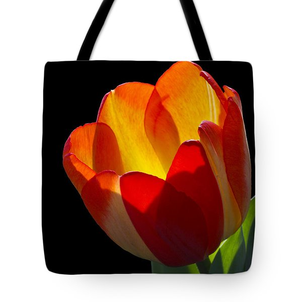 Tippy Tote Bag by Doug Norkum