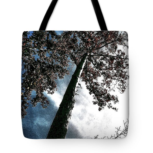 Tote Bag featuring the photograph Tippy Top Tree II Art by Lesa Fine