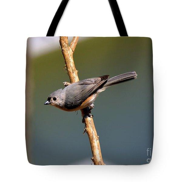 Titmouse Tote Bag by Lisa L Silva