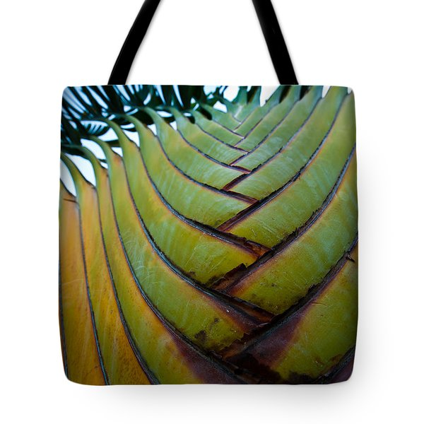 Tote Bag featuring the photograph To The Sky by Sebastian Musial