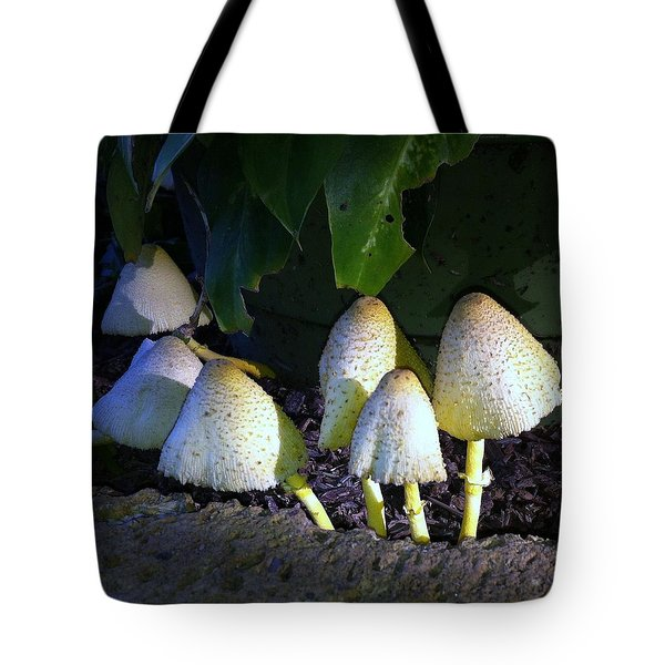Tote Bag featuring the photograph Toad Stools And Fairy Land by John Glass