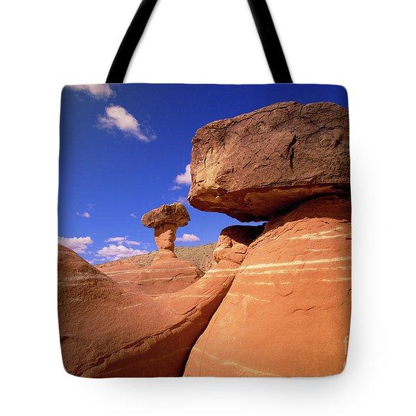 Toadstool Caprocks New Mexico Tote Bag