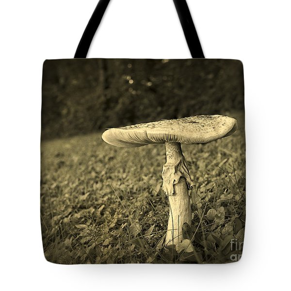 Toadstool Tote Bag by Edward Fielding