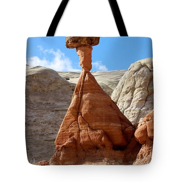 Toadstool Trail 1 Tote Bag