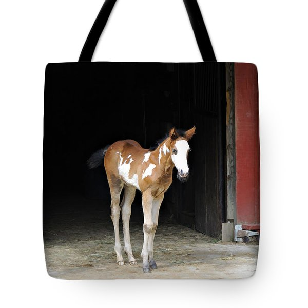 Tote Bag featuring the photograph Toccoa At The Barn by Kenny Francis