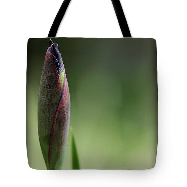 Today A Bud - Purple Iris Tote Bag by Debbie Oppermann